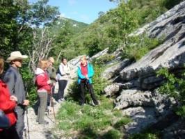Obilježen tjedan botaničkih vrtova, arboretuma i herbarijskih zbirki Hrvatske
